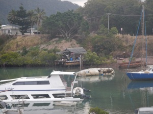 Cyclone aftermath.