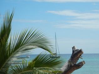 JoliFou at Amedee Island