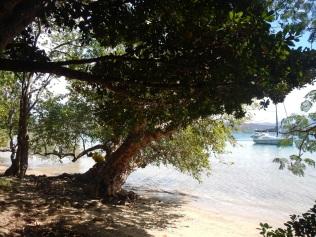 Casy Island Mooring