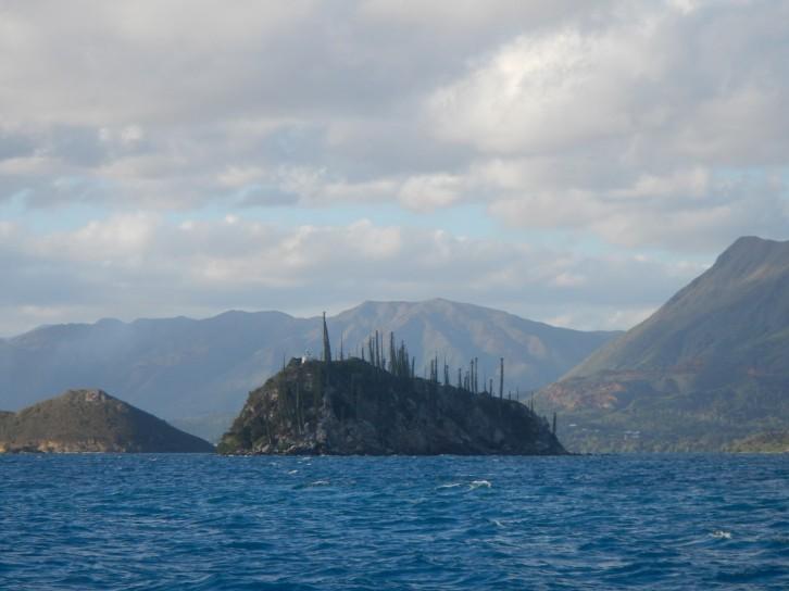 Ilot Porc Epic (Porcupine Island)