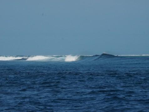 Promising surf break