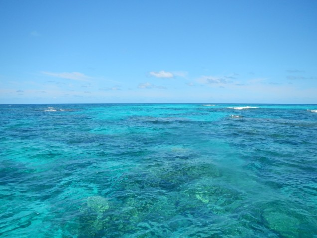 Beautiful gulley on Brosse South reef